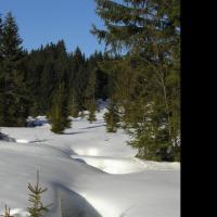 Okolí Pohoří na Šumavě v zimě