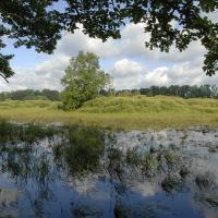 Novořecké močály Nature Reserve