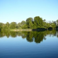 Písečný rybník