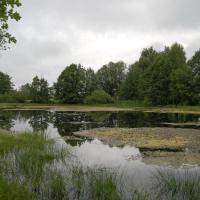 Rybník Stročov