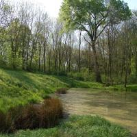 Rybníček u Hořan
