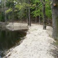PP Přesličkový rybník