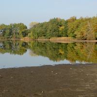 Podzim na rybníku Nový Vdovec