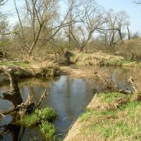 PR Horní Lužnice - přírodní tok Lužnice