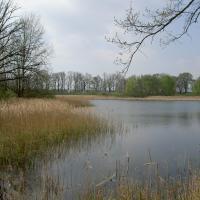 NPR Velký a Malý Tisý - rybník Velký Dubovec