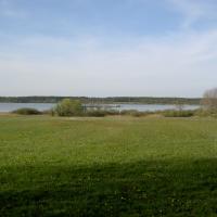 Louky v PP Lhota u Dynína na břehu Bošileckého rybníka