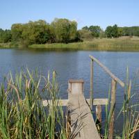 Rybník Dolní Zlatník