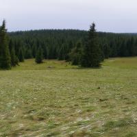 Pralouka - panoramatický pohled na kosenou část