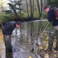 Monitoring mihule potoční na Jankovském potoce