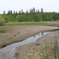Lovětínský rybník