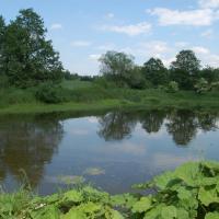 Rybníky sVelkým Gořalčokem