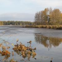 Rybníky u Vitmanova Nature Reserve - fishpond Nový Vdovec