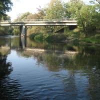 Střední Dyje - Dyje pod mostem silnice Hrádek-Jaroslavice