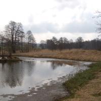Rybník U Polánky