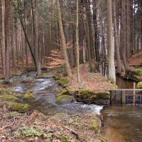 Jankovský potok - náhon k mlýnu