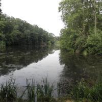 Božický rybník
