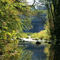 Křižanovice vodní nádrž těsně u hranice PR Krkanka
