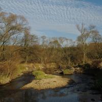 Meandry řeky Smědé v úseku PR u Dubového rybníka