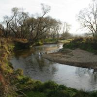 Přirozené meandry řeky Smědé v úseku PR nad Dubákem