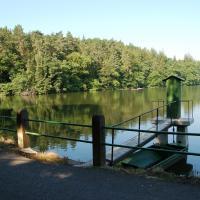 Vyžlovský rybník