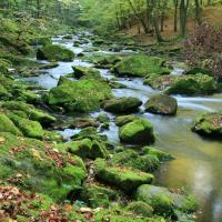 Údolí řeky Chrudimky