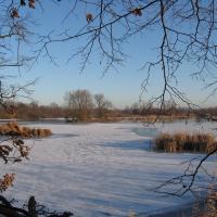 Kotvice Nature Reserve, Kotvice Fishpond