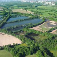 Polanecká rybniční soustava, v pozadí PR Polanský les
