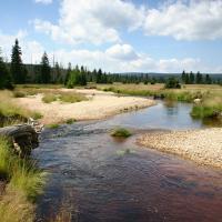 Rašeliniště Jizery National Nature Reserve