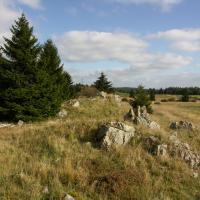 Mokřady a minerální prameny Slavkovského lesa