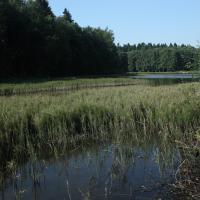 Opatov - Černý rybník