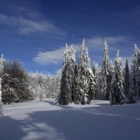 Zima na Bukačce