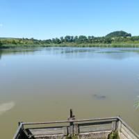 Rybník Čeperka