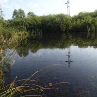 Dívčické rybníky