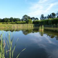 Oderské rybníky - štěrkovna