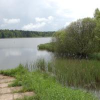 Dolní Padrťský rybník
