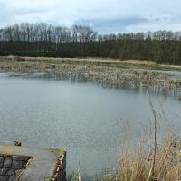 Olbramkostel - rybník Čekál
