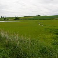 Znětínecký rybník