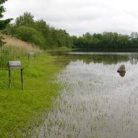 Jirkovský rybník