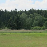 Kamenný rybník u Polničky