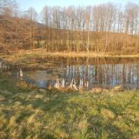 Libouchecké rybníčky - horní rybník