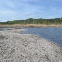 Máchovo jezero - NPP Swamp