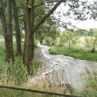 Bojovský potok