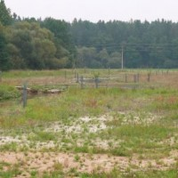 Koryta po revitalizaci a výsadbě vhodných dřevin