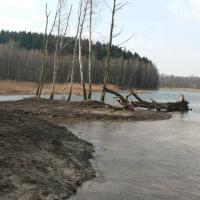 Revitalizace Dubového rybníku