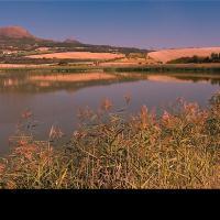 Dobroměřický rybník s Oblíkem v pozadí