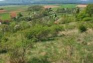 Dlouhá Loučka z PR Dlouholoučské stráně, v pozadí Hřebečovský hřbet. | Autor: Zuzana Růžičková
