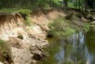 Boční eroze Lužnice v PR Na Ivance odhaluje vrstvy štěrkopísků | Autor: Miroslav Hátle