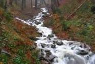 CHKO Orlické hory - rozvodněný potok nad Zákoutím | Autor: Rudolf Remeš