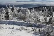 Králický Sněžník ze Šerlichu v Orlických horách | Autor: Josef Kučera