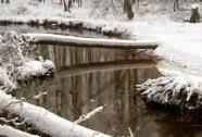 Stará řeka ve stejnojmenné NPR | Autor: Miroslav Hátle